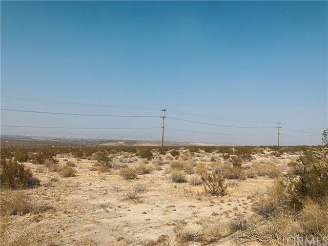 19118 Twentynine Palms - Photo 1