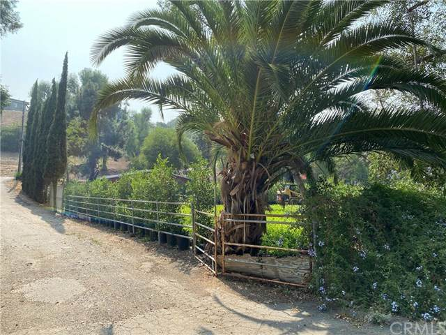1990 Fullerton Road, La Habra Heights, CA 90631 (#TR20194264) :: Crudo & Associates