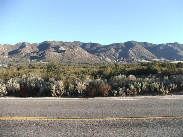 196 Montezuma Valley Road, Ranchita, CA 92066 (#200045596) :: The Costantino Group | Cal American Homes and Realty