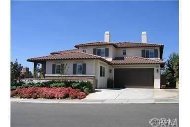 27165 Tree Rose Avenue, Murrieta, CA 92562 (#SW20192366) :: Camargo & Wilson Realty Team