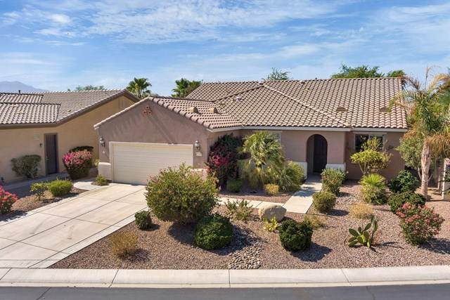 81190 Corte Del Olma, Indio, CA 92203 (#219049818DA) :: The Laffins Real Estate Team