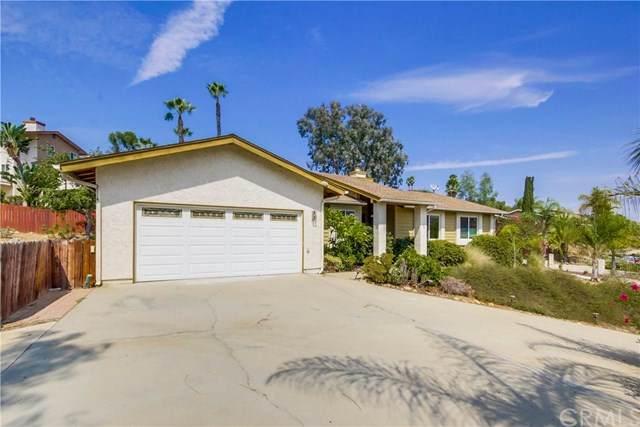 10020 Javelin Way, Spring Valley, CA 91977 (#SW20195157) :: Z Team OC Real Estate