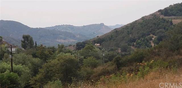 45251 La Cruz Drive, Temecula, CA 92590 (#SW20195181) :: The Laffins Real Estate Team