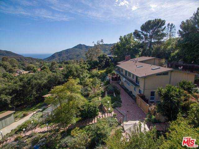 21311 Colina Drive, Topanga, CA 90290 (#20634522) :: The Laffins Real Estate Team
