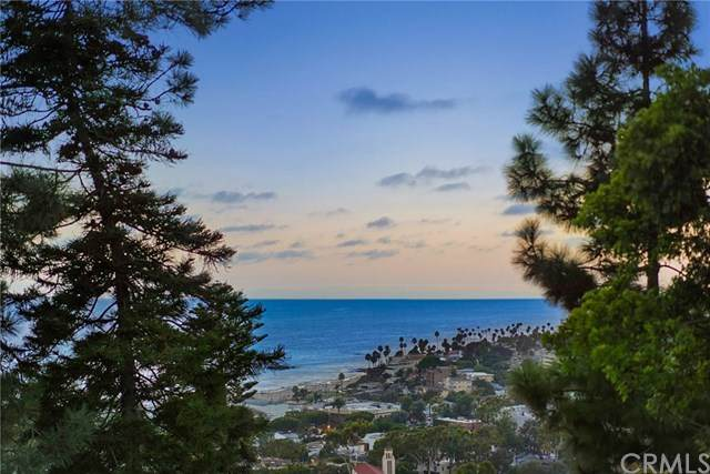 535 Mystic Way, Laguna Beach, CA 92651 (#OC20168791) :: Realty ONE Group Empire