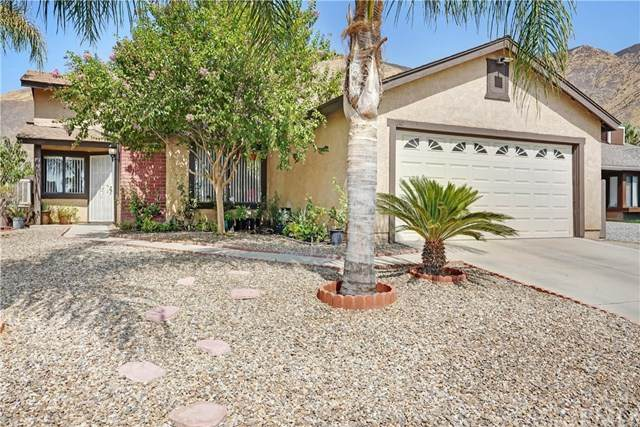247 Quandt Ranch Road, San Jacinto, CA 92583 (#PW20196042) :: The Laffins Real Estate Team