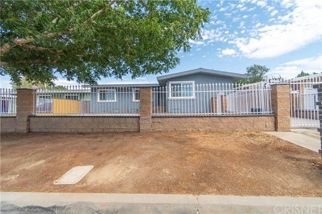 38832 Carolside Avenue, Palmdale, CA 93550 (#SR20196075) :: eXp Realty of California Inc.