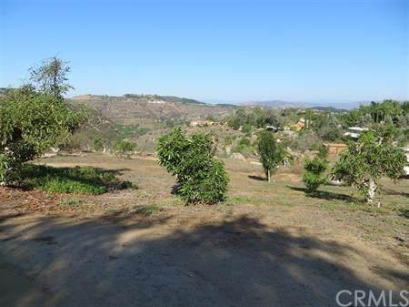 14085 Pauma Vista Drive, Valley Center, CA 92082 (#OC20197431) :: The Miller Group