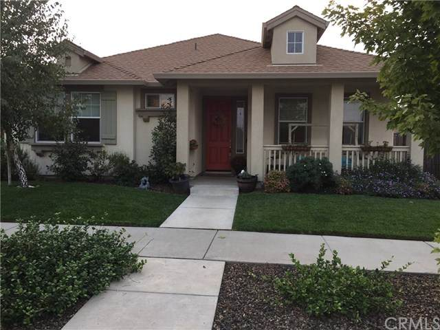 3281 Chamberlain Run, Chico, CA 95973 (#SN20197853) :: The Laffins Real Estate Team