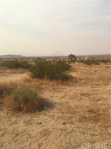 0 Vac/Vic 220 Ste/Ave P12, Llano, CA 93591 (#SR20197468) :: eXp Realty of California Inc.