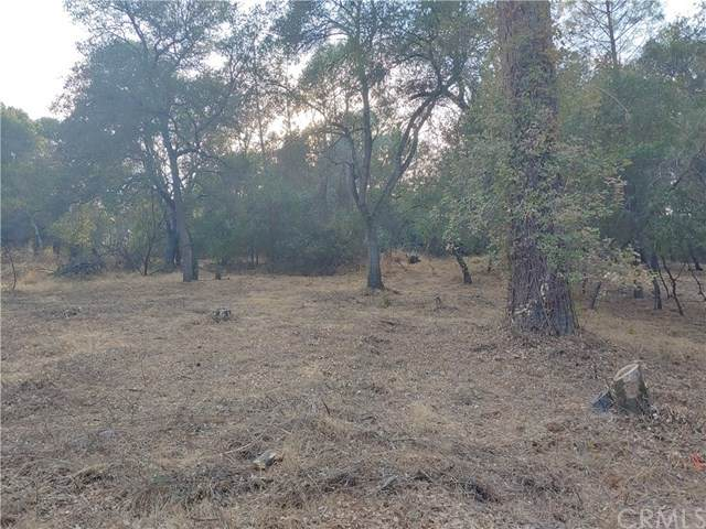14240 Woodland Drive, Clearlake, CA 95422 (#LC20198141) :: The Laffins Real Estate Team