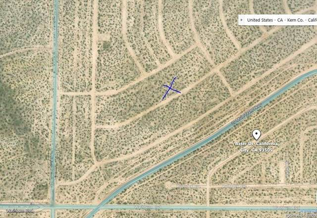 20 Mule Team Parkway, California City, CA 93561 (#PTP2000046) :: Powerhouse Real Estate