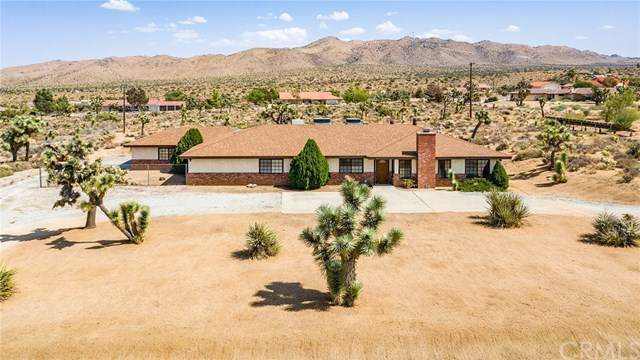 9143 Del Monte Avenue, Yucca Valley, CA 92284 (#JT20194279) :: Team Tami