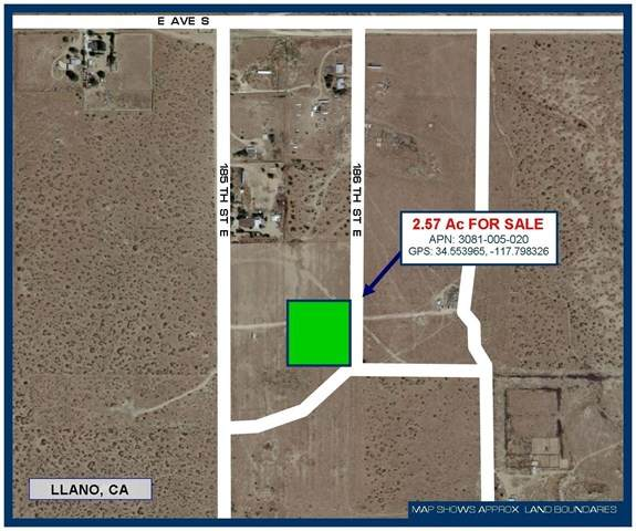 0 186th Street, Llano, CA 93544 (#528487) :: Steele Canyon Realty