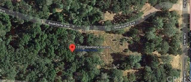 15593 Beakbane Avenue, Clearlake, CA 95422 (#LC20199016) :: Crudo & Associates