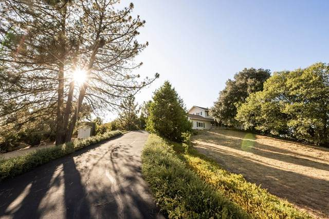 908 Wild Rose Road, Julian, CA 92036 (#NDP2000151) :: Go Gabby