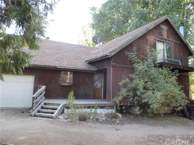 1221 Snowline Drive, Frazier Park, CA 93225 (#SR20199856) :: Crudo & Associates