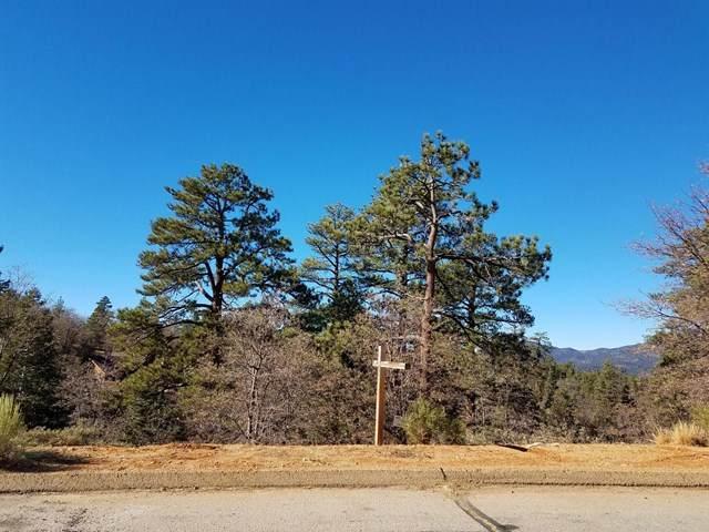 0 Klamath Road, Big Bear, CA 92314 (#219050201PS) :: Z Team OC Real Estate