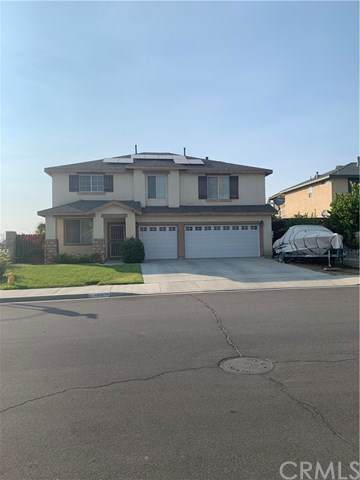 24901 Tigris Lane, Hemet, CA 92544 (#SW20199841) :: Z Team OC Real Estate