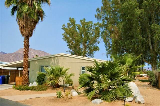 1010 Palm Canyon Dr #228, Borrego Springs, CA 92004 (#200046369) :: The Results Group