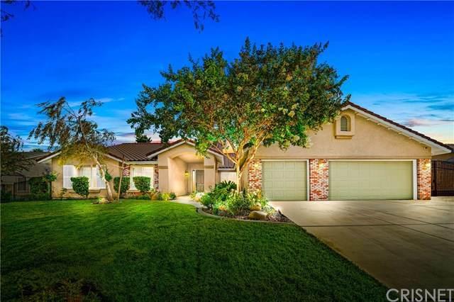 4520 Otter Court, Palmdale, CA 93551 (#SR20200828) :: Z Team OC Real Estate