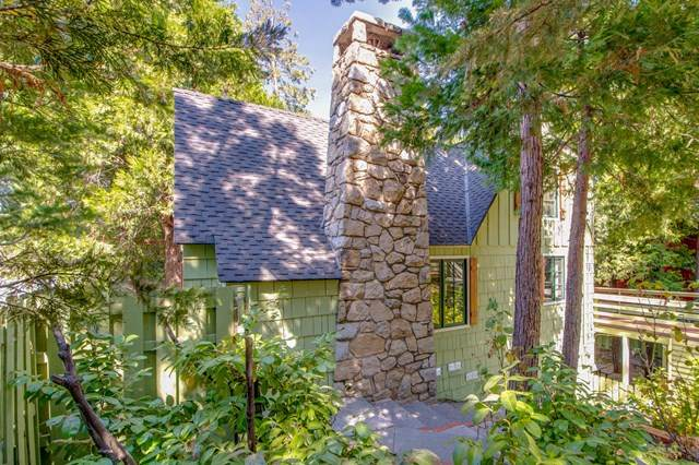 28772 Cedar Drive, Lake Arrowhead, CA 92352 (#219050282PS) :: The Marelly Group | Compass