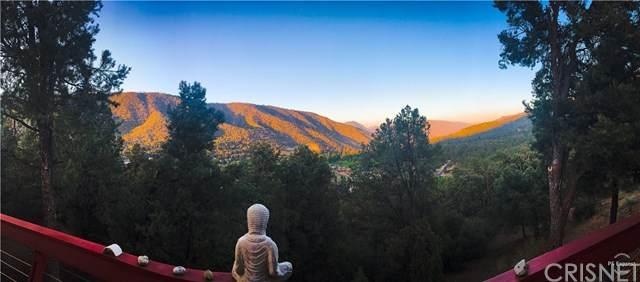 2316 Ironwood Drive, Pine Mountain Club, CA 93222 (#SR20200773) :: Berkshire Hathaway HomeServices California Properties