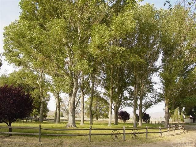 15400 Hwy 173, Hesperia, CA 92345 (MLS #LG20202110) :: Desert Area Homes For Sale
