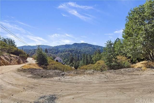 172 Craghill Drive, Cedar Glen, CA 92321 (#EV20202267) :: Blake Cory Home Selling Team