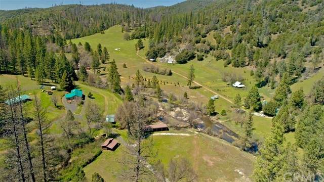 8692 Bull Creek Road, Coulterville, CA 95311 (#MP20201098) :: Twiss Realty