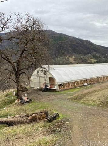 17113 Elk Mountain Road, Upper Lake, CA 95485 (#LC20202504) :: Mark Nazzal Real Estate Group