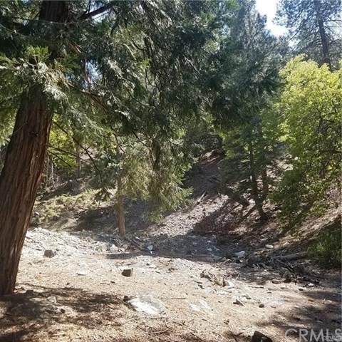 0 Summit, Forest Falls, CA 92339 (#EV20202461) :: TeamRobinson | RE/MAX One