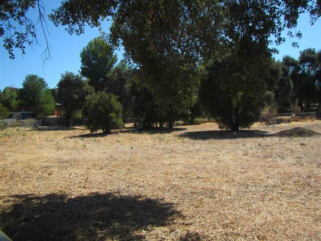 2-lots Cacti, Campo, CA 91906 (#PTP2000215) :: American Real Estate List & Sell