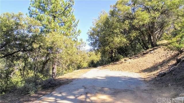 1716 Zermatt Drive, Pine Mountain Club, CA 90302 (#SR20191430) :: The Laffins Real Estate Team
