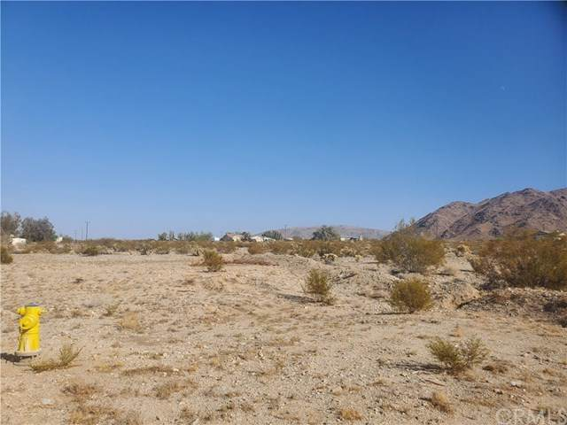 0 Clare, 29 Palms, CA 92277 (#JT20203441) :: Realty ONE Group Empire