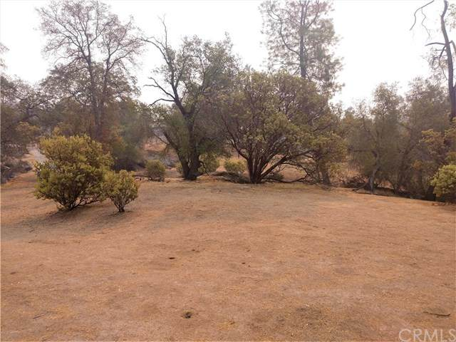 0 Lot 856 Deep Forest Dr - Photo 1