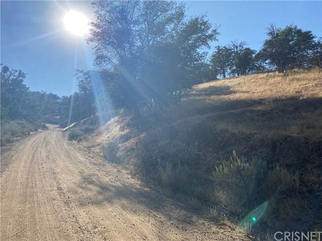 3424 Lot 60, Tehachapi, CA 93461 (#SR20204772) :: Hart Coastal Group