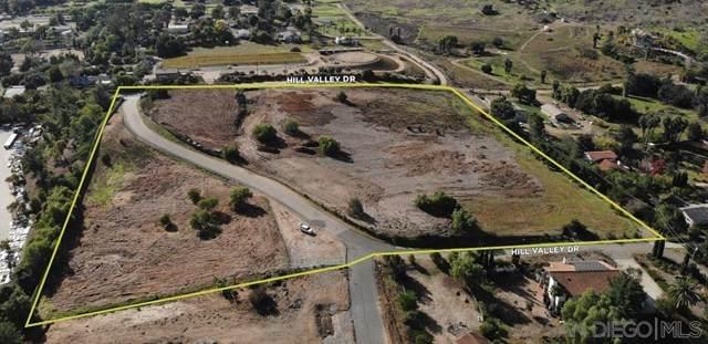 Hill Valley Drive, Escondido, CA 92029 (#200046929) :: Bathurst Coastal Properties