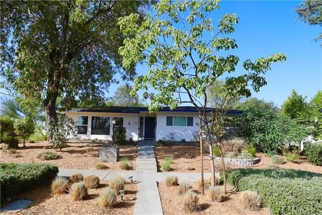 2906 Molly Street, Riverside, CA 92506 (MLS #IV20205102) :: Desert Area Homes For Sale