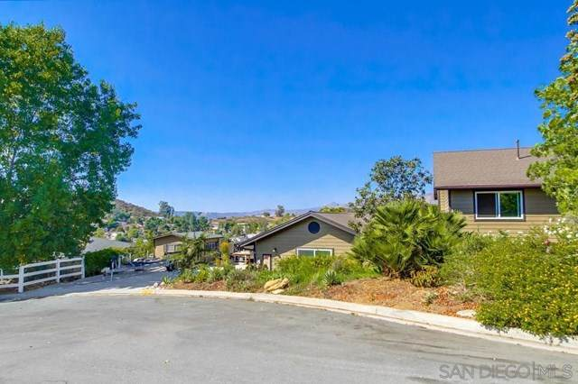 9282 Lakeview Terrace, Lakeside, CA 92040 (#200047048) :: The Laffins Real Estate Team
