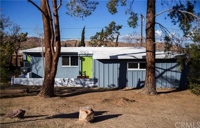 61638 El Reposo Street, Joshua Tree, CA 92252 (#JT20205875) :: Blake Cory Home Selling Team
