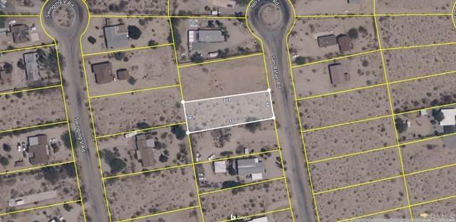 0 San Rafael Road, Borrego Springs, CA 92004 (#NDP2000653) :: TeamRobinson | RE/MAX One