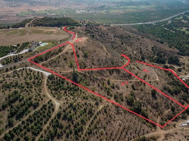 Lot 3 Monserate Hill - Photo 1