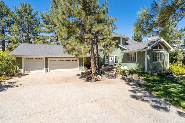 60900 Devils Ladder Road, Mountain Center, CA 92561 (#SW20204522) :: The Costantino Group | Cal American Homes and Realty