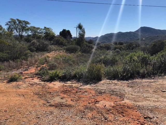 0 Dos Picos Park Road - Photo 1