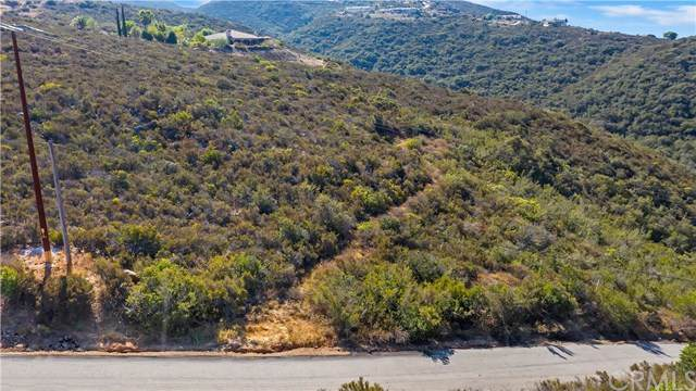 0 Magee Road, Pala, CA 92082 (#SW20197001) :: The Costantino Group | Cal American Homes and Realty