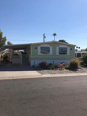 73579 Algonquin Place, Thousand Palms, CA 92276 (#219050879PS) :: Team Forss Realty Group