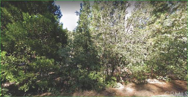 0 Marian View, Idyllwild, CA 92549 (#SW20210806) :: RE/MAX Masters