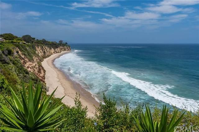 29130 Cliffside Drive, Malibu, CA 90265 (#SB20211580) :: The Parsons Team
