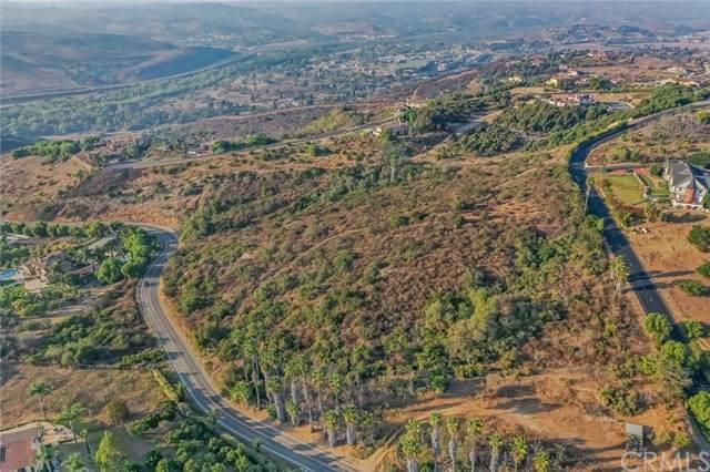 0 Dentro De Lomas Road, Bonsall, CA 92003 (#ND20212811) :: Millman Team